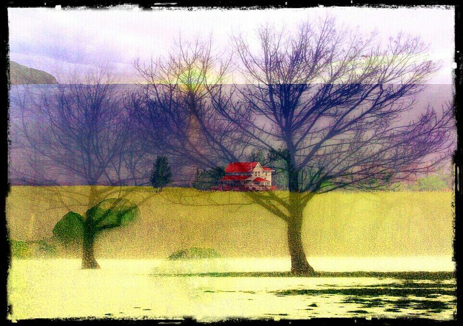 Farm house by the sea.