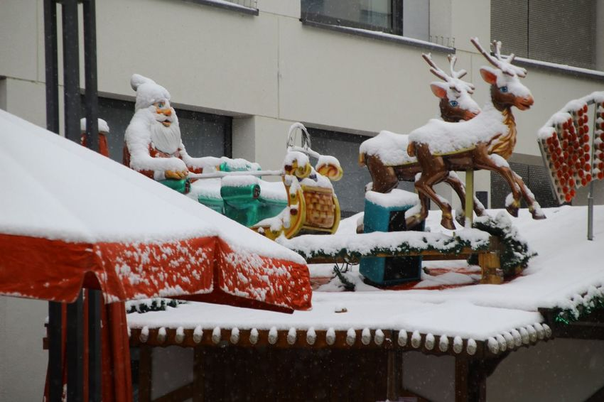 Astrology Sign Snowing Christmas Winter Reindeer Snow Animal Cold Temperature Christmas Decoration Celebration No People Bird Outdoors Animal Themes Day
