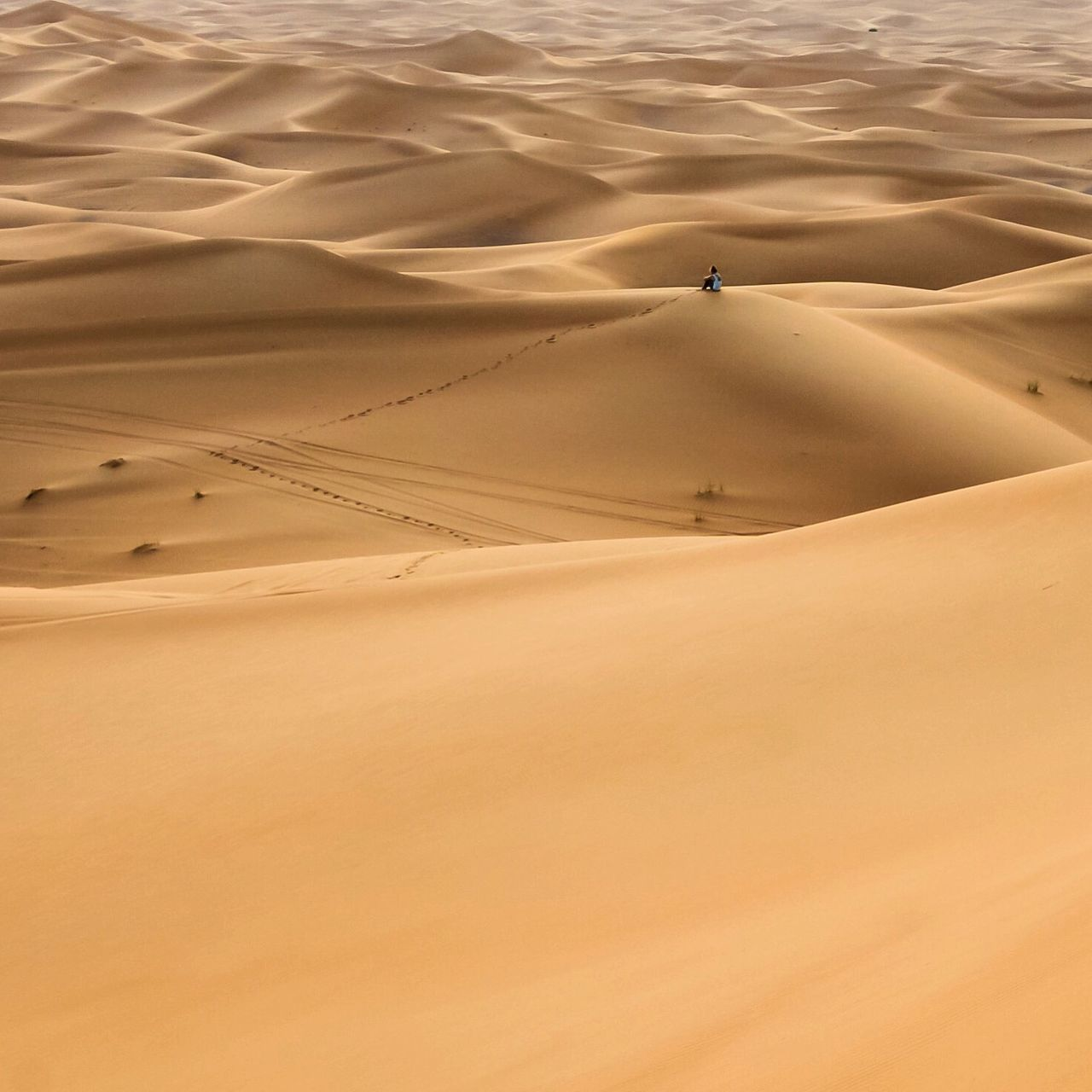 Beautiful stock photos of desert, Arid Climate, Backgrounds, Beauty In Nature, Brown