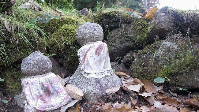 城址の出口辺りにあった小さなお地蔵さん。前の石がお地蔵さんに見えたのも間違いではなかったみたい♪ お地蔵さん Jizo Japanese Culture Stones Stone - Object Nature Hello World Enjoying Life Travel Photography Japan