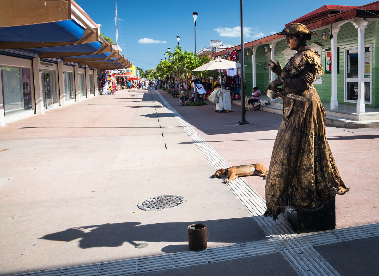 Adult Adults Only City Cozumel Day One Man Only One Person Outdoors People Real People Travel Destinations Tree