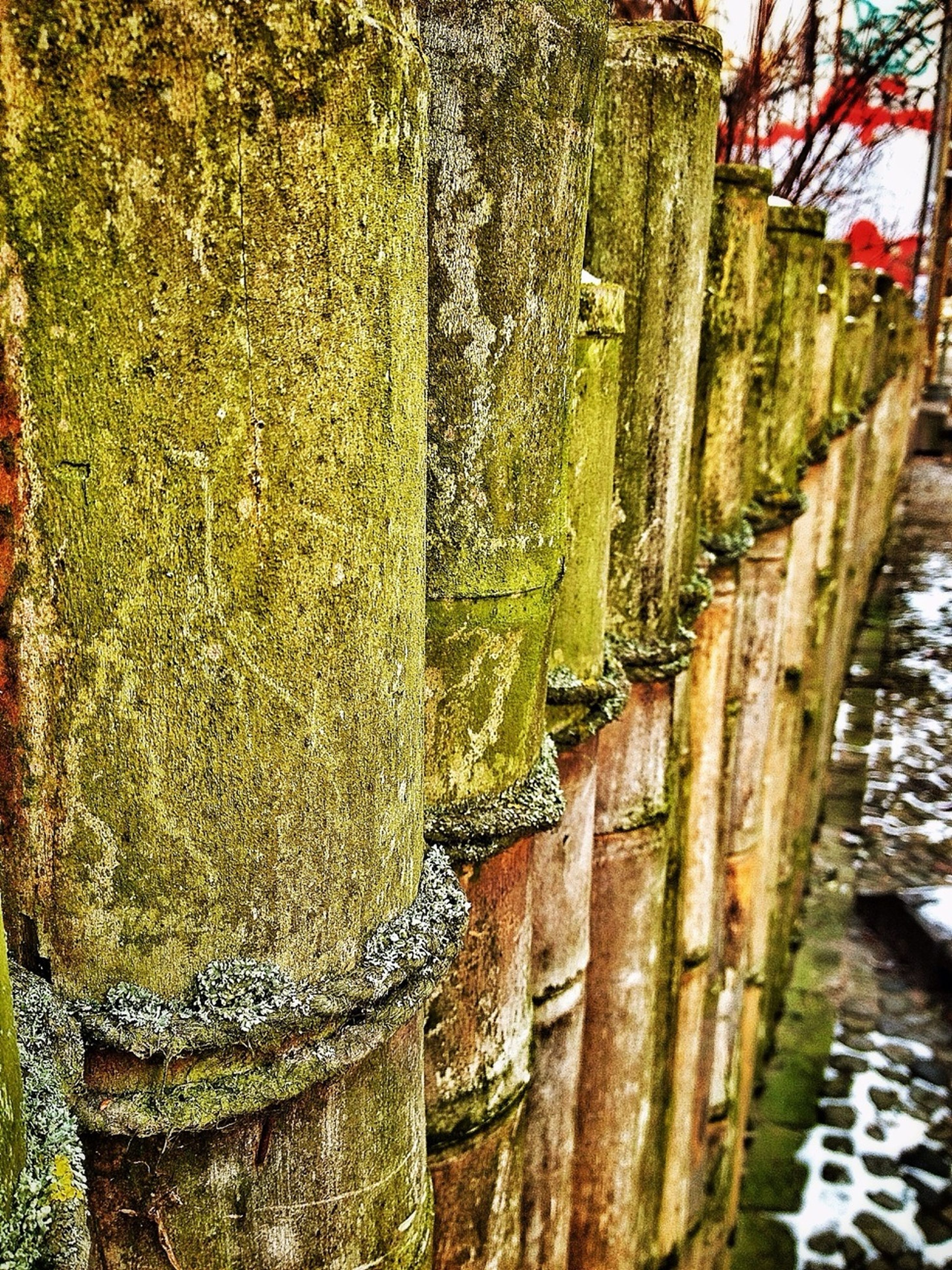 built structure, architecture, wall - building feature, in a row, wood - material, day, weathered, outdoors, building exterior, no people, close-up, green color, wall, nature, stone wall, plant, textured, wooden, railing, old