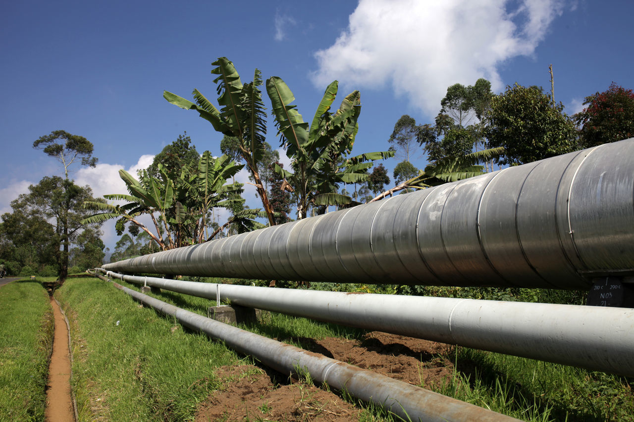 pipe - tube, pipeline, tree, industry, sky, day, green color, fuel and power generation, oil industry, outdoors, water pipe, growth, no people, factory, nature, petrochemical plant
