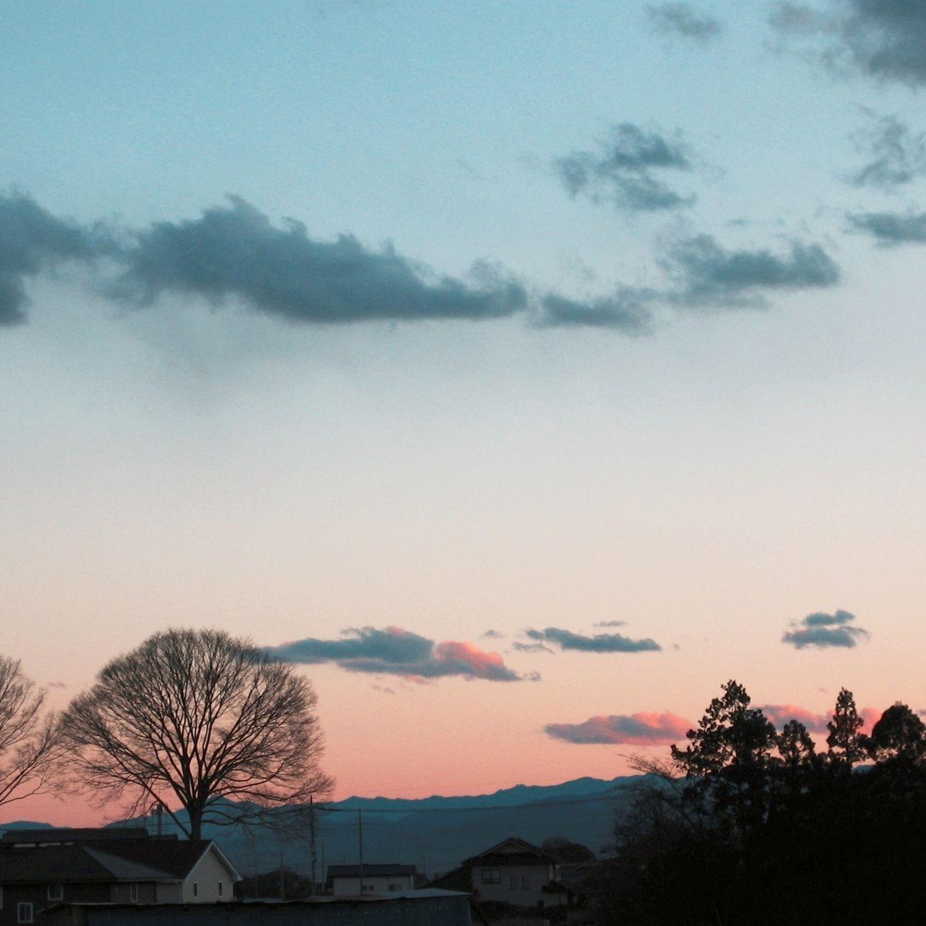 Dusk Winter Solstice