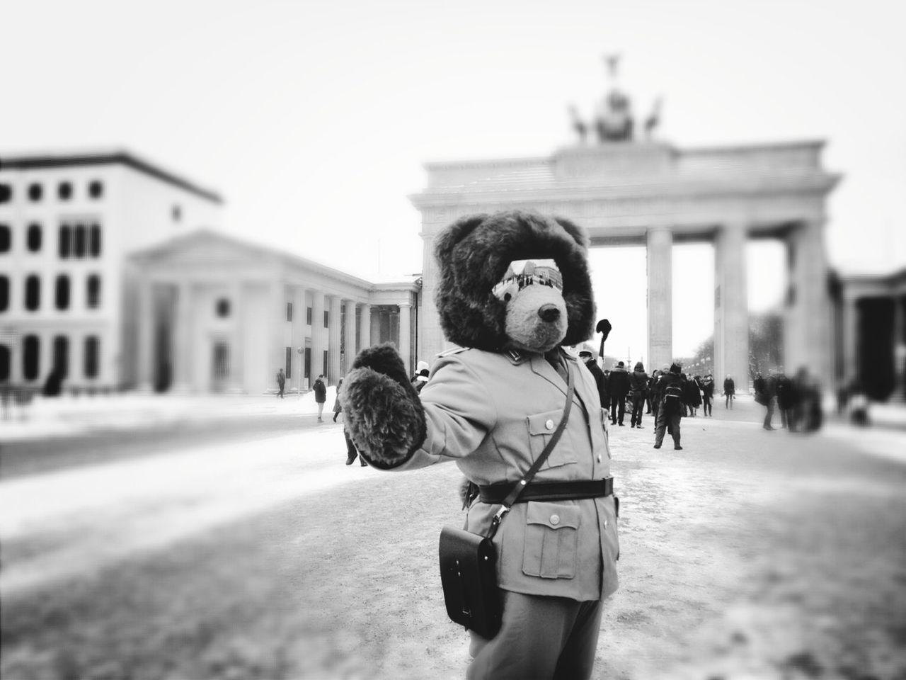 Beautiful stock photos of teddy bear, Animal Representation, Architecture, Berlin, Brandenburg Gate