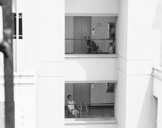 """Was contemplating about life when I saw this outside my window. """"Life Cycle"""" Eyeem Philippines EyeEm Best Shots Life Truth Age Philippines"""