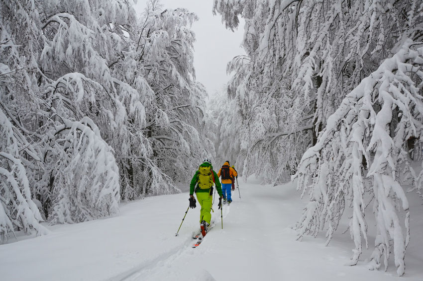 Cross Country Skiing Mountain Nature Ski Snow Snow Sports Sports Clothing Winter