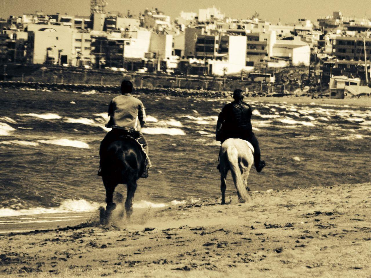 Horses at the Beach. Beach Beachphotography Horse Horses Edited Beauty In Nature Amoudara Kreta Day Outdoors Water A Beautiful Landscape Photo