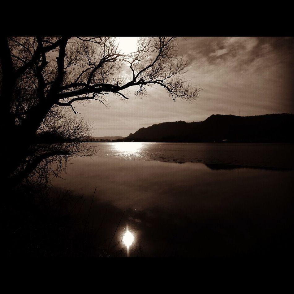 Somberance Somber Reflective Monochrome The Driftless Region Karst Mood Peaceful 70's Vibe Lake Lake Winona Minnesota Hills Bluffs Rolling