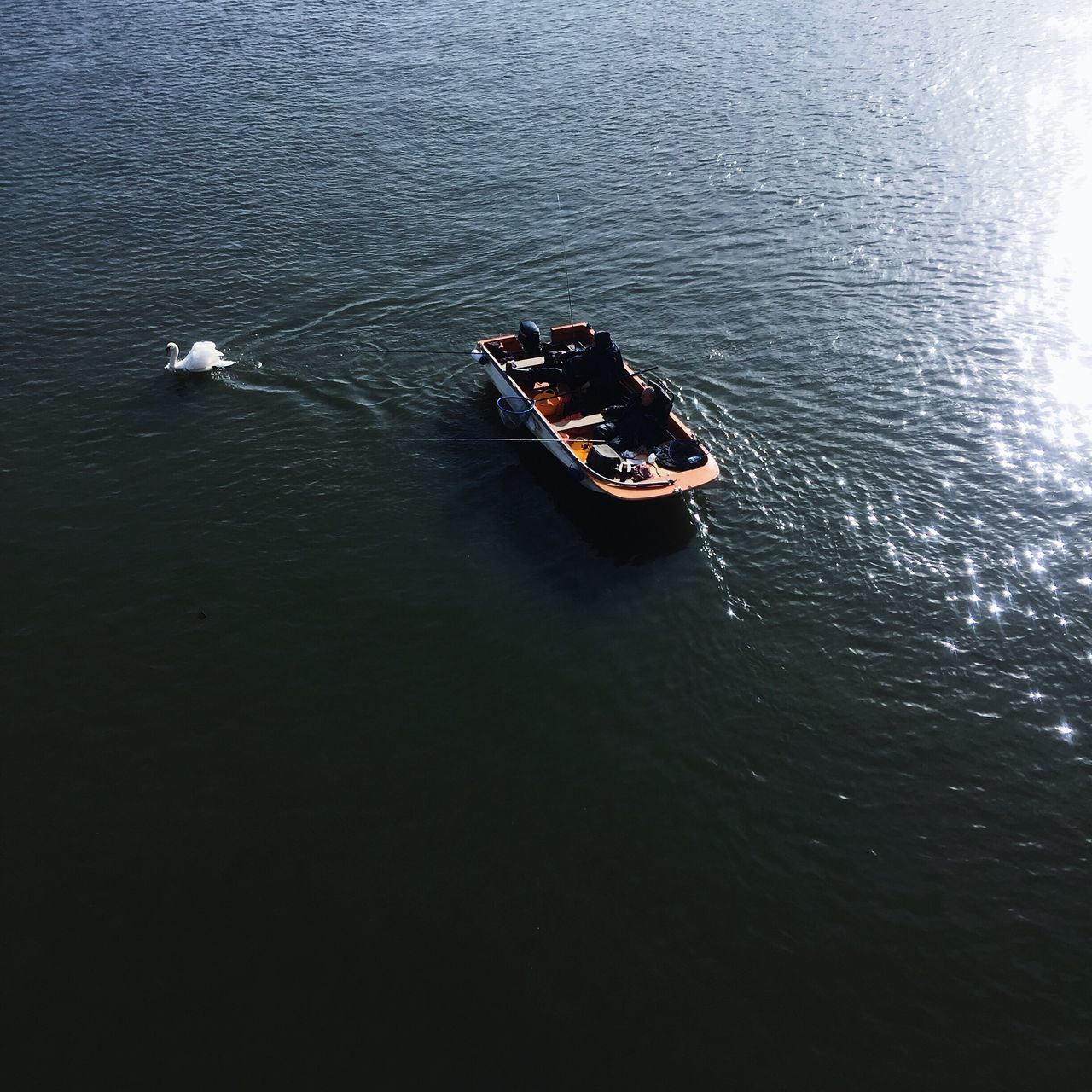 high angle view, transportation, nautical vessel, day, mode of transport, nature, no people, outdoors, waterfront, water