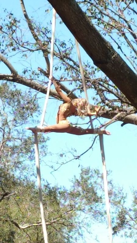 Tree spirit Tree Low Angle View Sky Nature Branch Bare Tree Day Outdoors Beauty In Nature Performance Celebration Acrobatic Art Is Everywhere