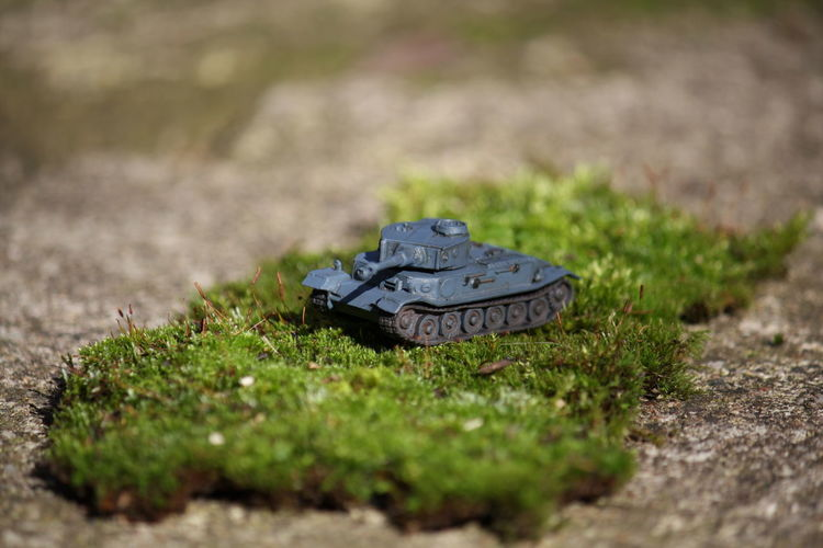 Green Island Of Green Moss Moss And Concrete Panzer Plastic Toy Tank Tiger P Toy Tank