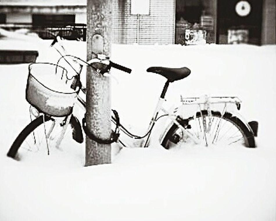 Snow Winter Season  Clouds Recombinant Bike Cold Eye4photography  EyeEm Gallery Canon EyeEm Whrite Blackandwhite