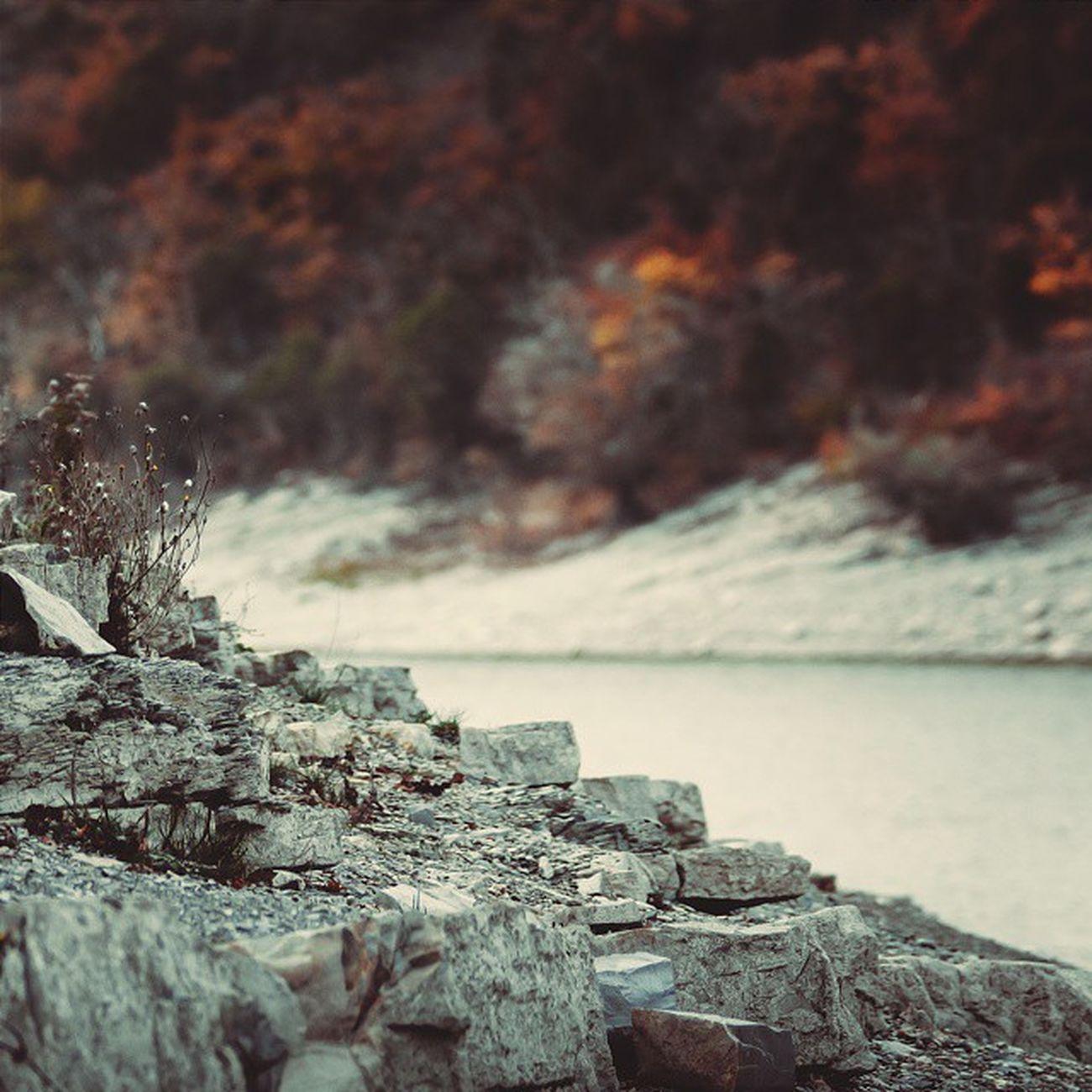 осень в красных тонах (пос. Сукко . озеро с болотными кипарисами) 🍁 Wigandt_photo Wigandtphoto Wigandt Sonyalpha Minolta Russia Россия Анапа Anapa Photorussia TravellingRussia