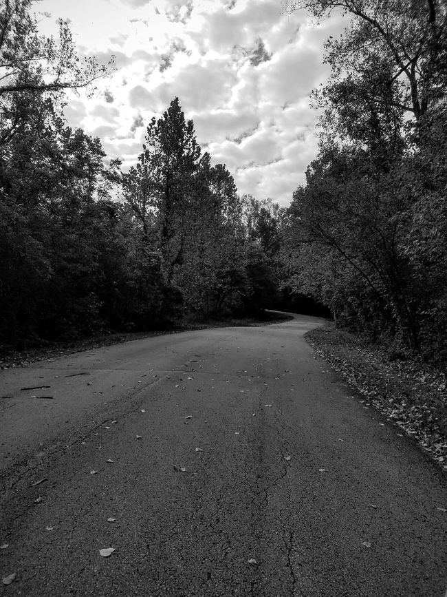 Fall drive v.2- b&w Black And White Tree Road Transportation Diminishing Perspective Empty Road Nature Solitude Non-urban Scene Long Outdoors Look! No People Samsung Galaxy S7 Edge Landscape TakeoverContrast