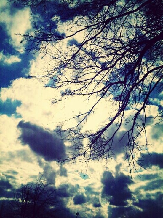 Sunset #sun #clouds #skylovers #sky #nature #beautifulinnature #naturalbeauty #photography #landscape Clouds And Sky Tree