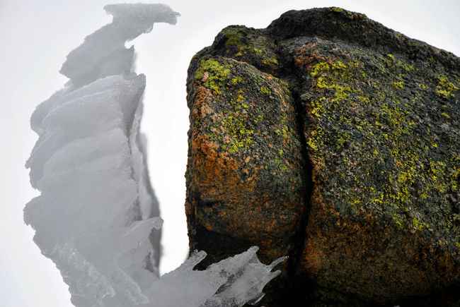Battle continues Contrasts Geology Ice Nature Rock Spring Weather Photography Winter
