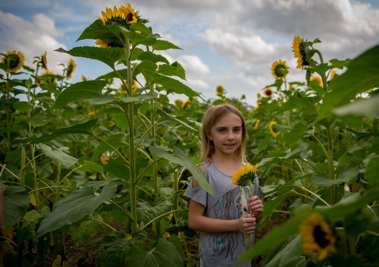 Beautiful stock photos of miami,  8-9 Years,  Agriculture,  Beauty,  Beauty In Nature