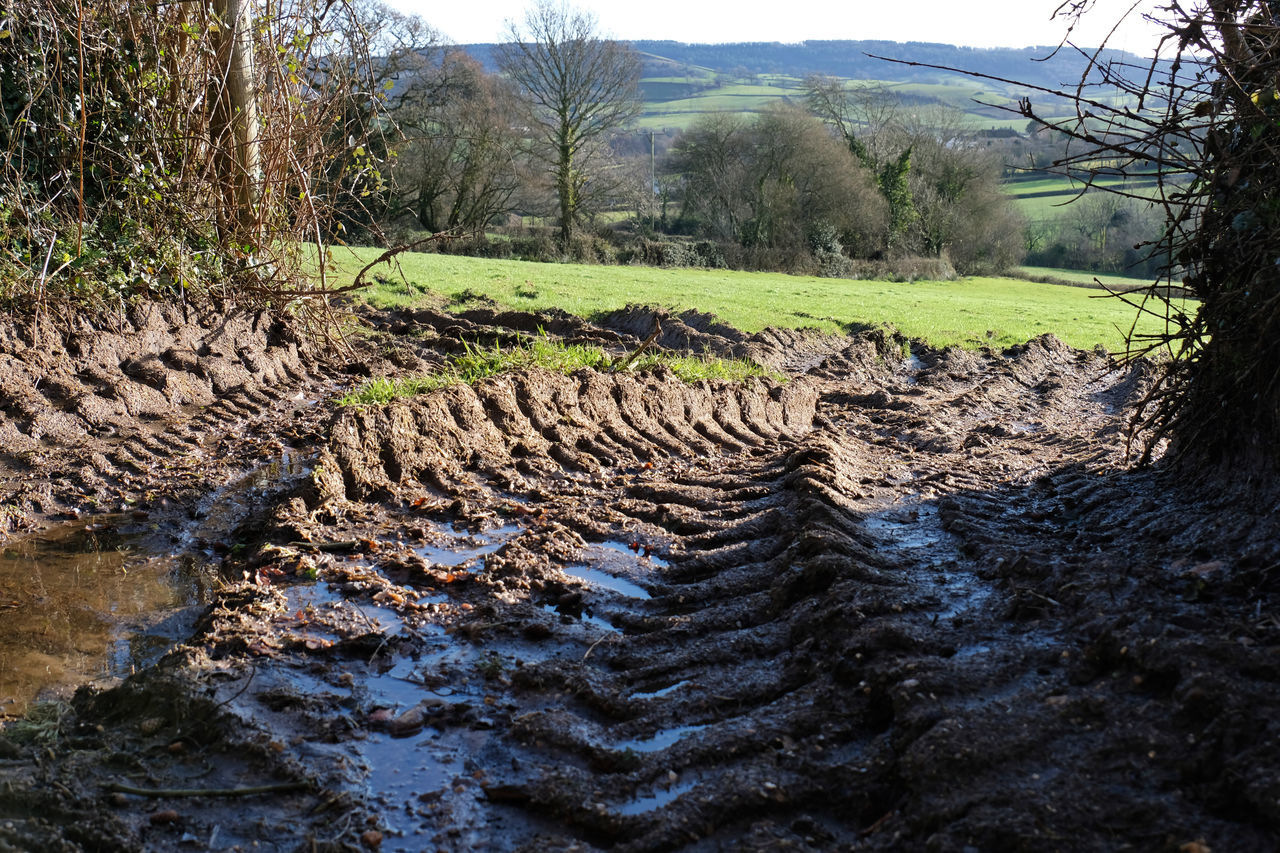 Tractor prints Agriculture Country Living Field Pattern, Texture, Shape And Form Puddles Tractor Agricultural Land Beauty In Nature Close-up Country Life Countryside Farming Landscape Mud Muddy Nature No People Outdoors Pattern Scenics Tracks Tracks In Mud Tractor Prints Tranquility