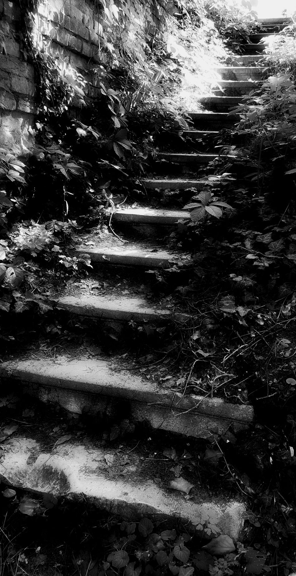 Stairways Old Old Building  Old Stairways Black And White Photography Shadows & Lights Power In Nature Naturpower Horror Photography