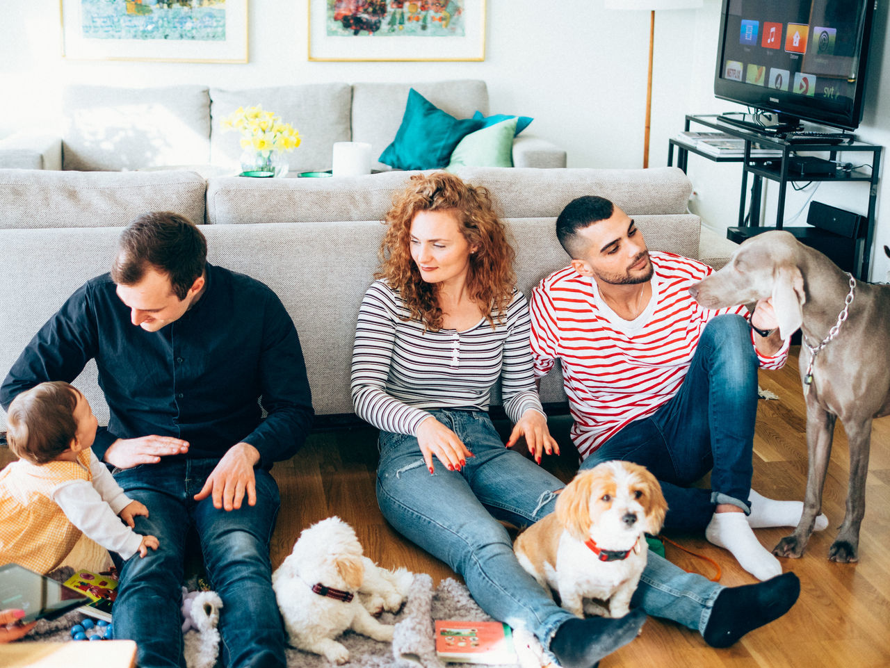 Beautiful stock photos of ostern, pets, dog, togetherness, friendship