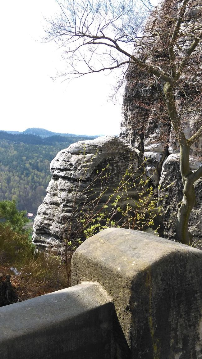 Elbsandsteingebirge Bastei Tadaa Community Sächsische Schweiz Showcase April Sachsen Rathen Enjoying Life