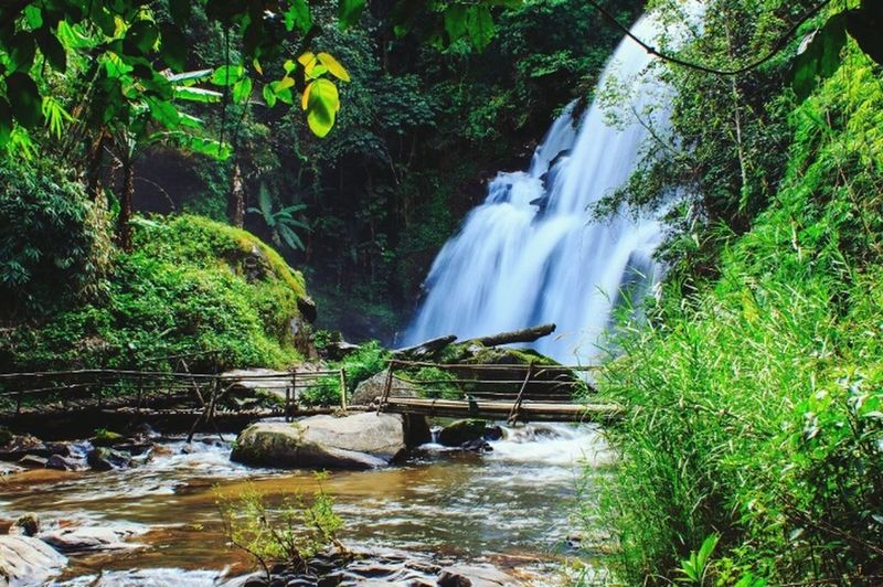 Chill day Waterfall Beauty In Nature Green Color No People