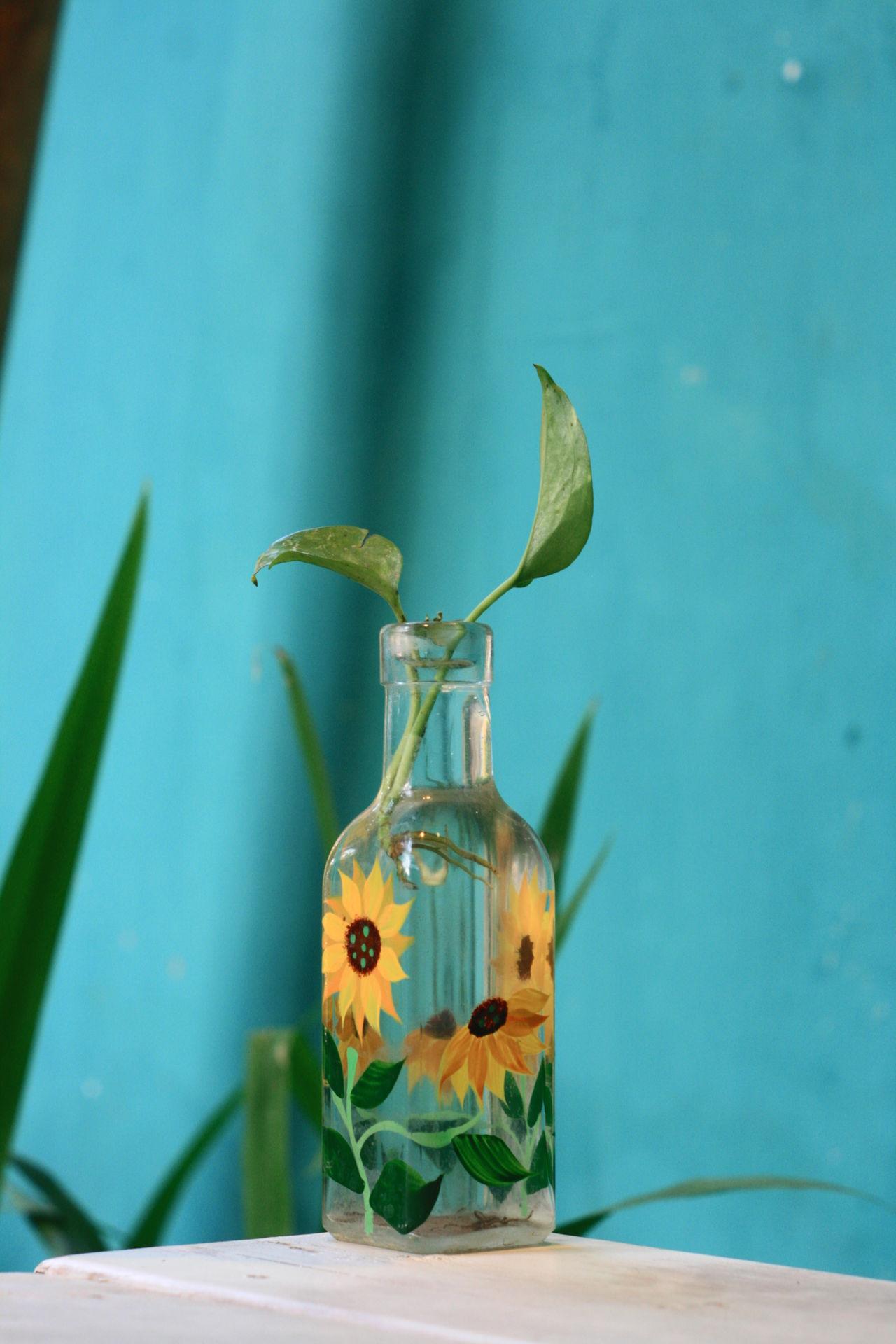 DIY vase Blue Close-up Day DIY DIY Stuff Flower Flower Head Fragility Freshness Green Color Growth Indoors  Leaf Nature No People Plant Potted Plant Sunflower Table Vase