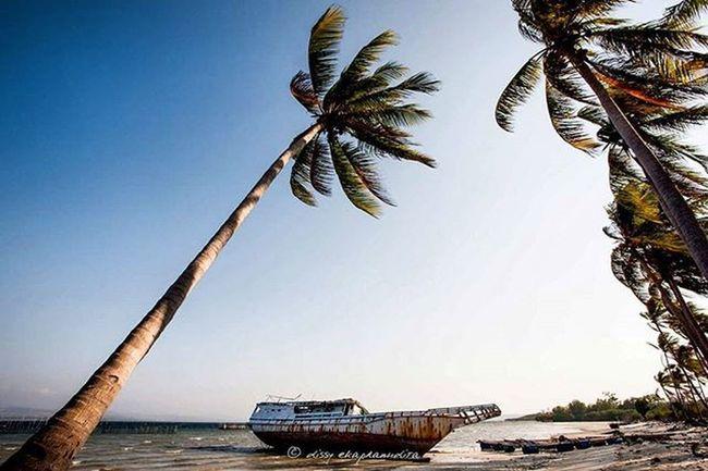 Somewhere in Indonesia Beach Shipwreck Coconuttrees Selayar INDONESIA 1000kata BeautifulIndonesia Natgeotravel Asiangeographic Indonesiaplayground Instalike Instagram Instagood Instadaily Photooftheday