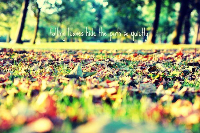 Осень свитер 👕зонт💧 чаёк🍵