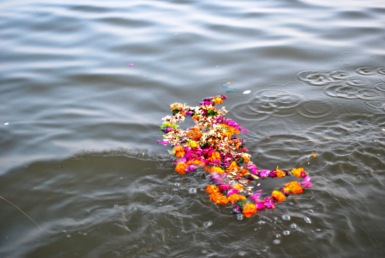 Beautiful stock photos of god, Cultures, Day, Floating, Garland