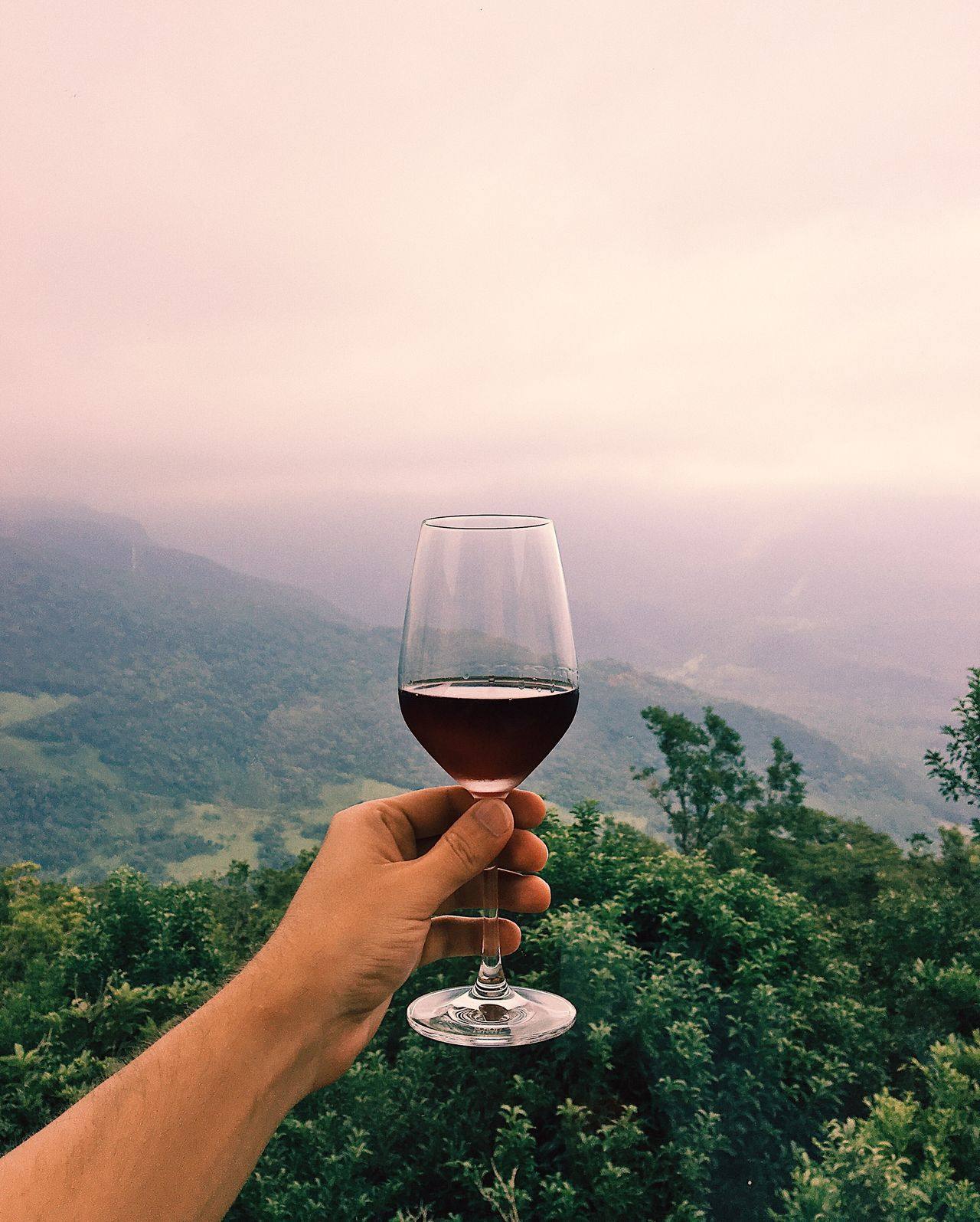 Wine Not Wineglass Wine Human Hand Alcohol Red Wine Holding Drink Human Body Part Food And Drink Drinking Glass One Person Refreshment Real People Drinking Mountain Tree Sky Nature Landscape Men EyeEm Selects