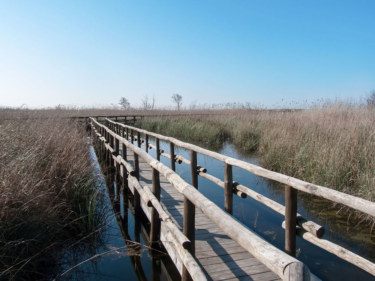 Clear Sky Day Jetty Lake Massaciuccoli Nature Nature Exploration No People Outdoors Pond Railing Relax Place Rushes Sky The Way Forward Walk On Water Wood Wood - Material Wood Jetty Wood Street