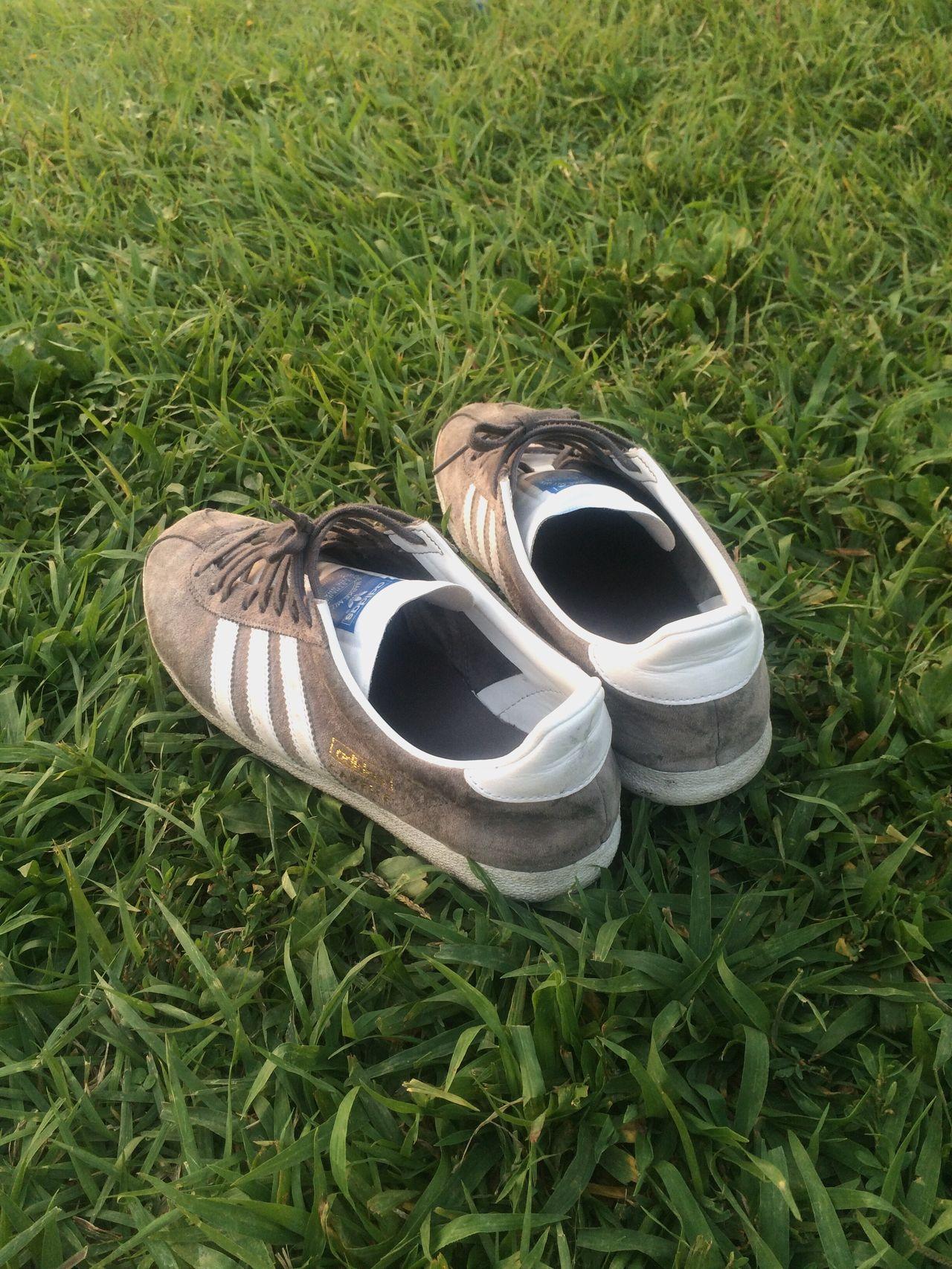 Addidas Gazelle Sneakers Grey