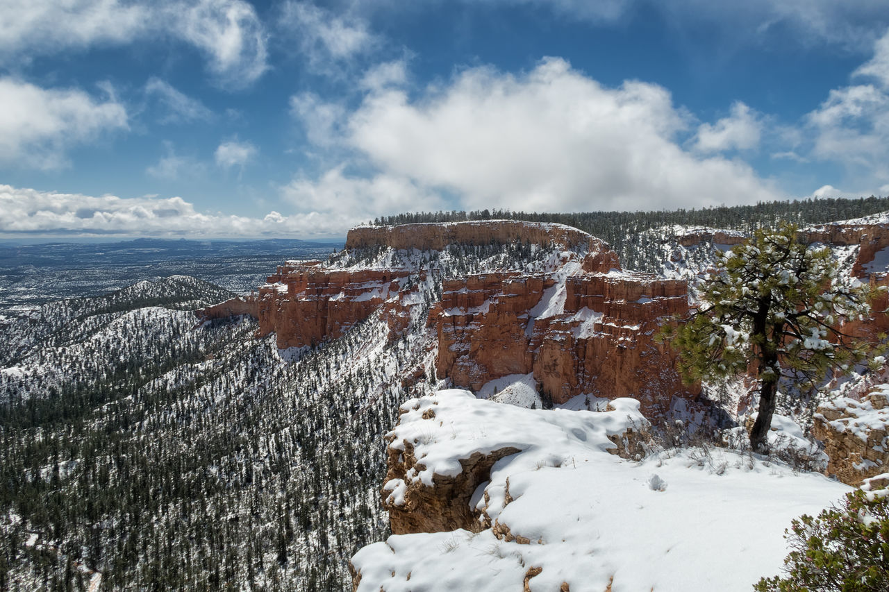 snow and nice colors at Bryce canyon national park in Utah Beauty In Nature Betterlandscapes Bryce Canyon National Park Cold Temperature Day EyeEm Best Shots EyeEm Gallery EyeEm Nature Lover EyeEmNewHere Landscape Nature Nature_collection Neighborhood Map No People Outdoors Sky Snow Tranquility Tree Utah Winter