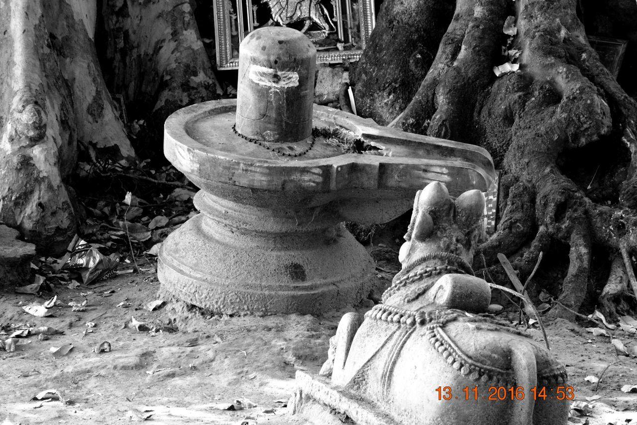 India Nandi No People Shiva Shivling Statue Talakadu Village