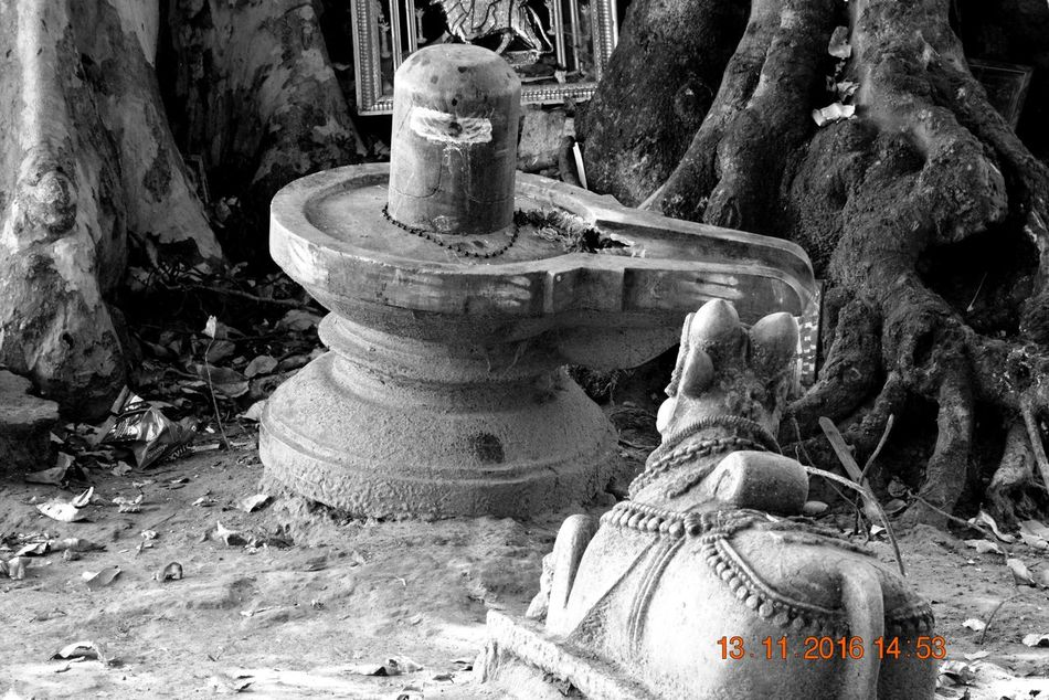 India Nandi No People Shiva Shivling Statue Talakadu Village