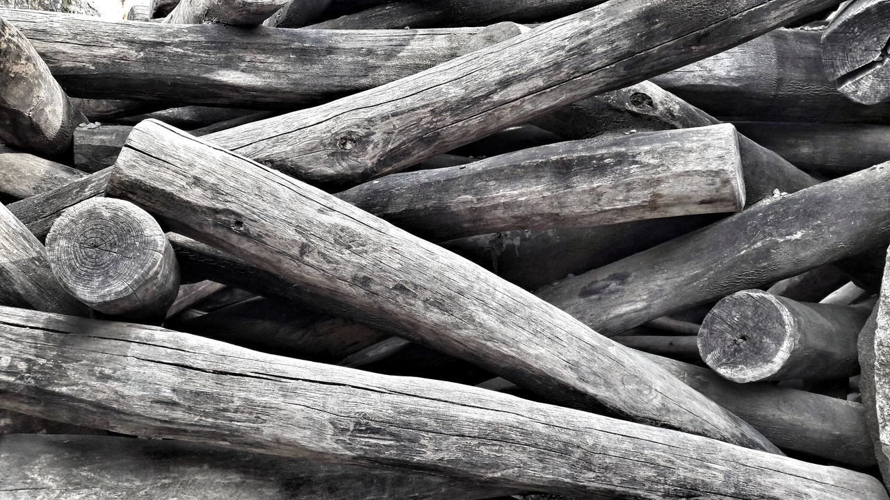 Wood Trunks Tree Trunks Close-up Outdoors No People Large Group Of Objects Chaos Wood A Glorious Mess Bnw