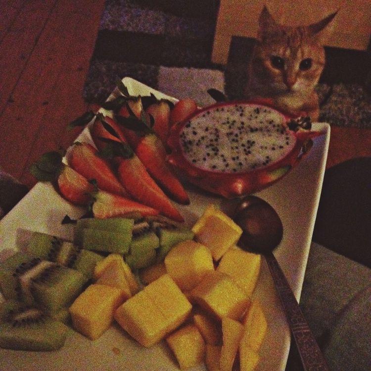 Tigerlou Fruits Enjoying Life Home