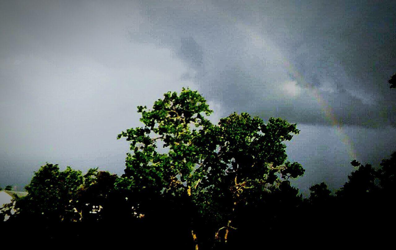 Rainbow Tree Tropical StormCindy OneHalfOfTheRainbow God'SPromise No People Outdoors Tranquility Beauty In Nature WasInAWE I❤Rainbow's Sky Tree Area EyeEm Best Shots - Nature EyeEm Nature Lover Best Of EyeEm Beauty In Nature Eyeembestshot_landscape