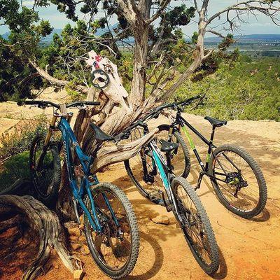 Bikes Durango Bffs @magstarkavan