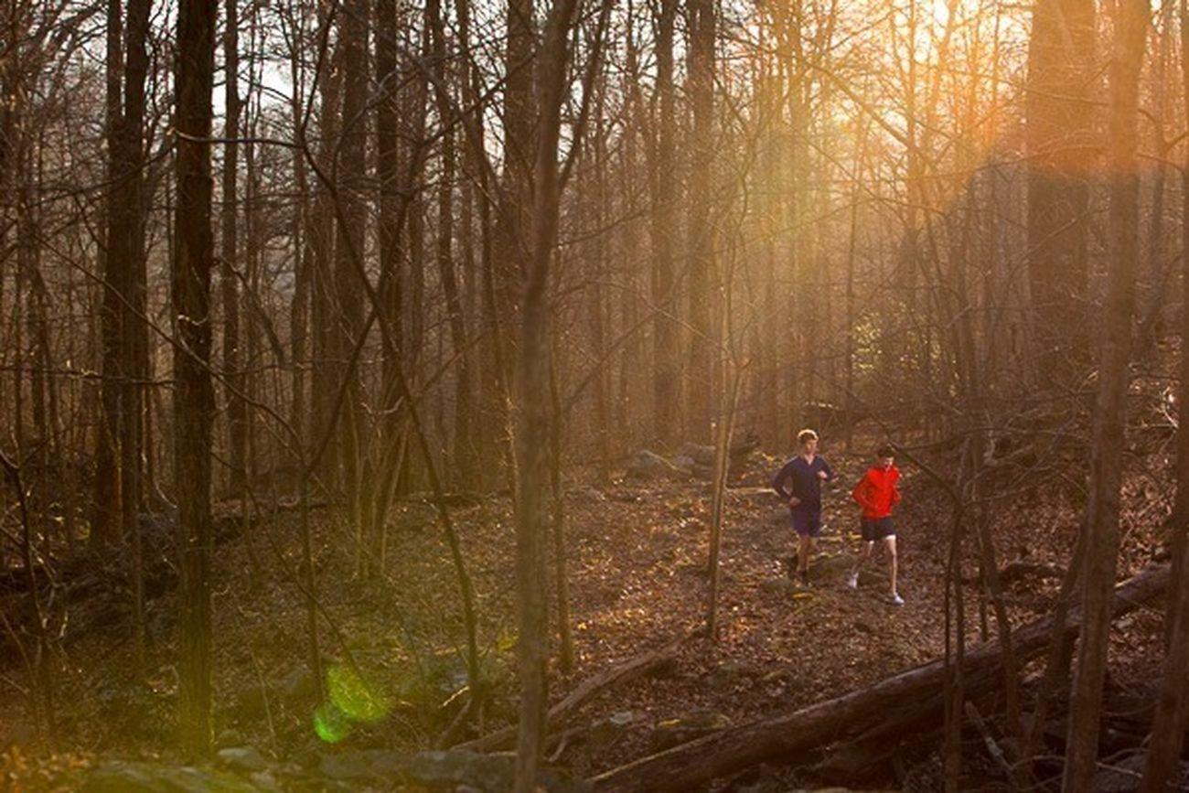 Winter Trail Run