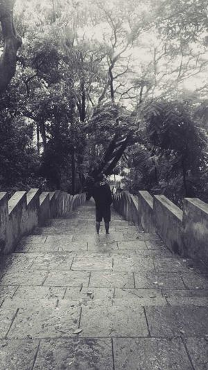 Nature Tranquility India Leaves🌿 Garden Park Mumbai Eyeemphotography EyeEm Gallery Beautiful Nature Black And White Smartphonephotography Outdoors Backgrounds One Person Adults Only Rear View Tree Walking The Way Forward Full Length Day Real People One Man Only Standing