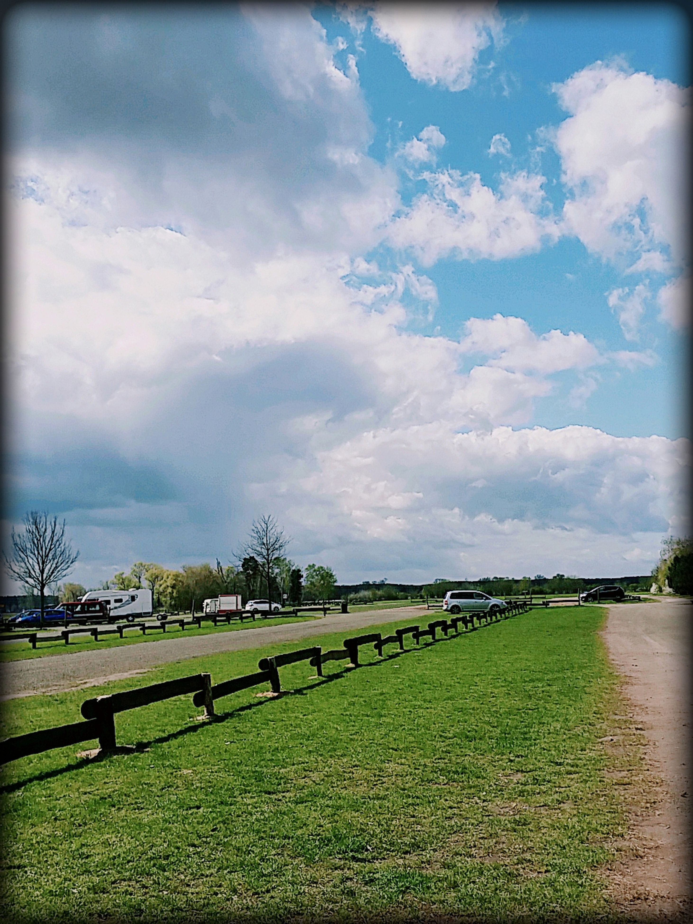 sky, grass, cloud - sky, nature, outdoors, tranquility, growth, no people, day, agriculture, tree, beauty in nature
