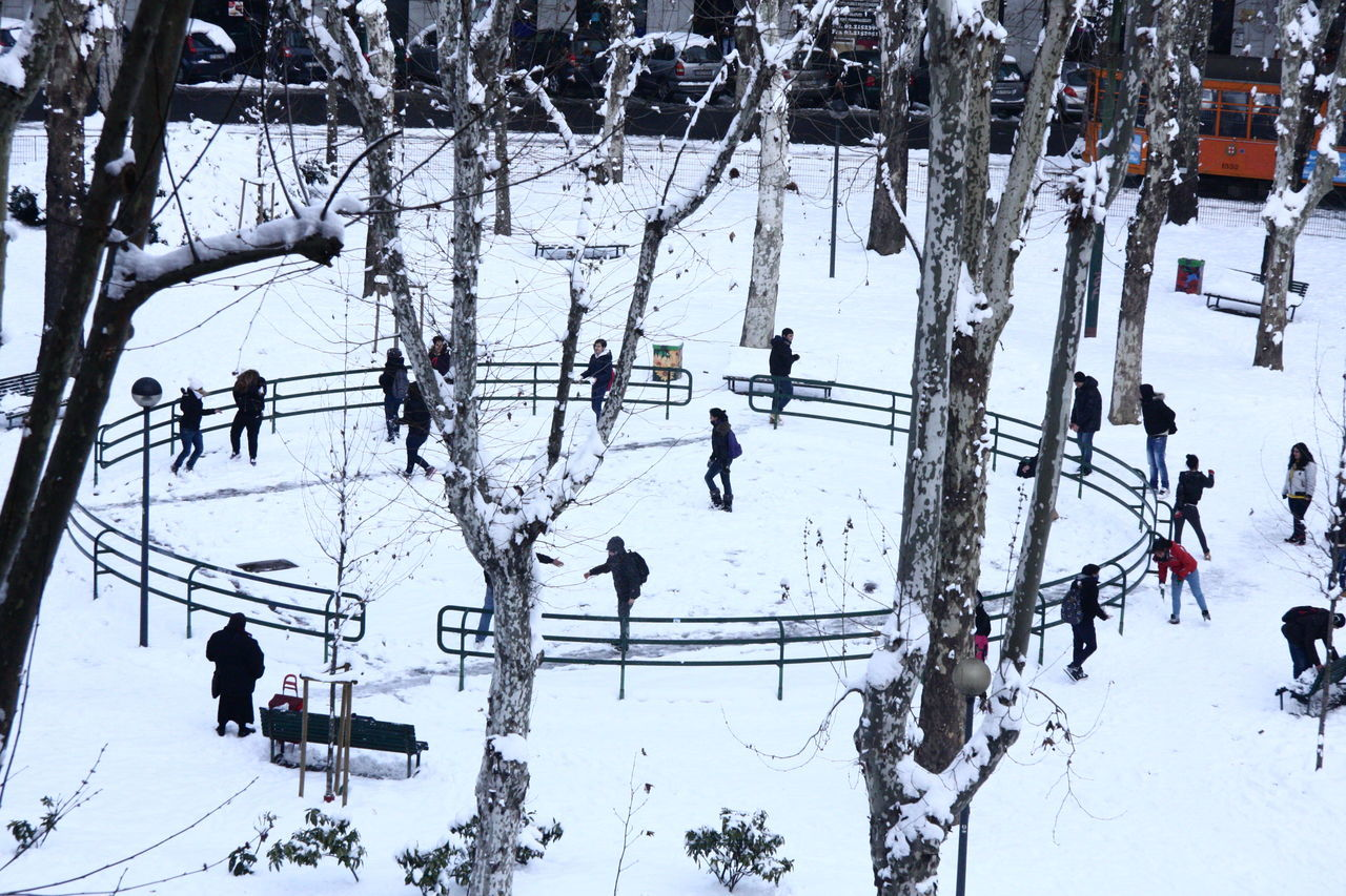 Afterschool  City Life Cityscapes Cold Temperature Joy Kids Snow Snowing Square Trees White Winter Winter Sport