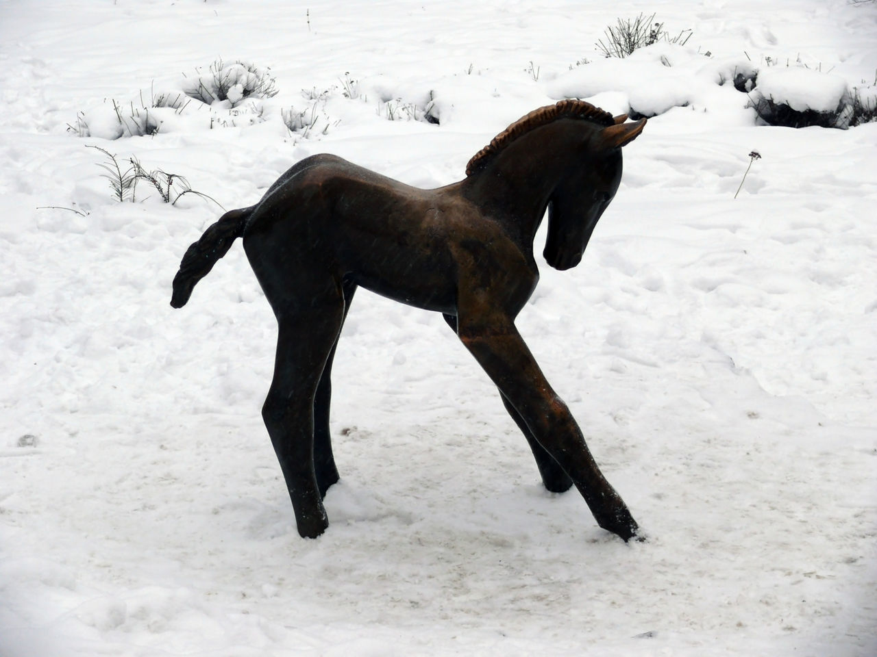 Wooden Foal On Snow Covered Field