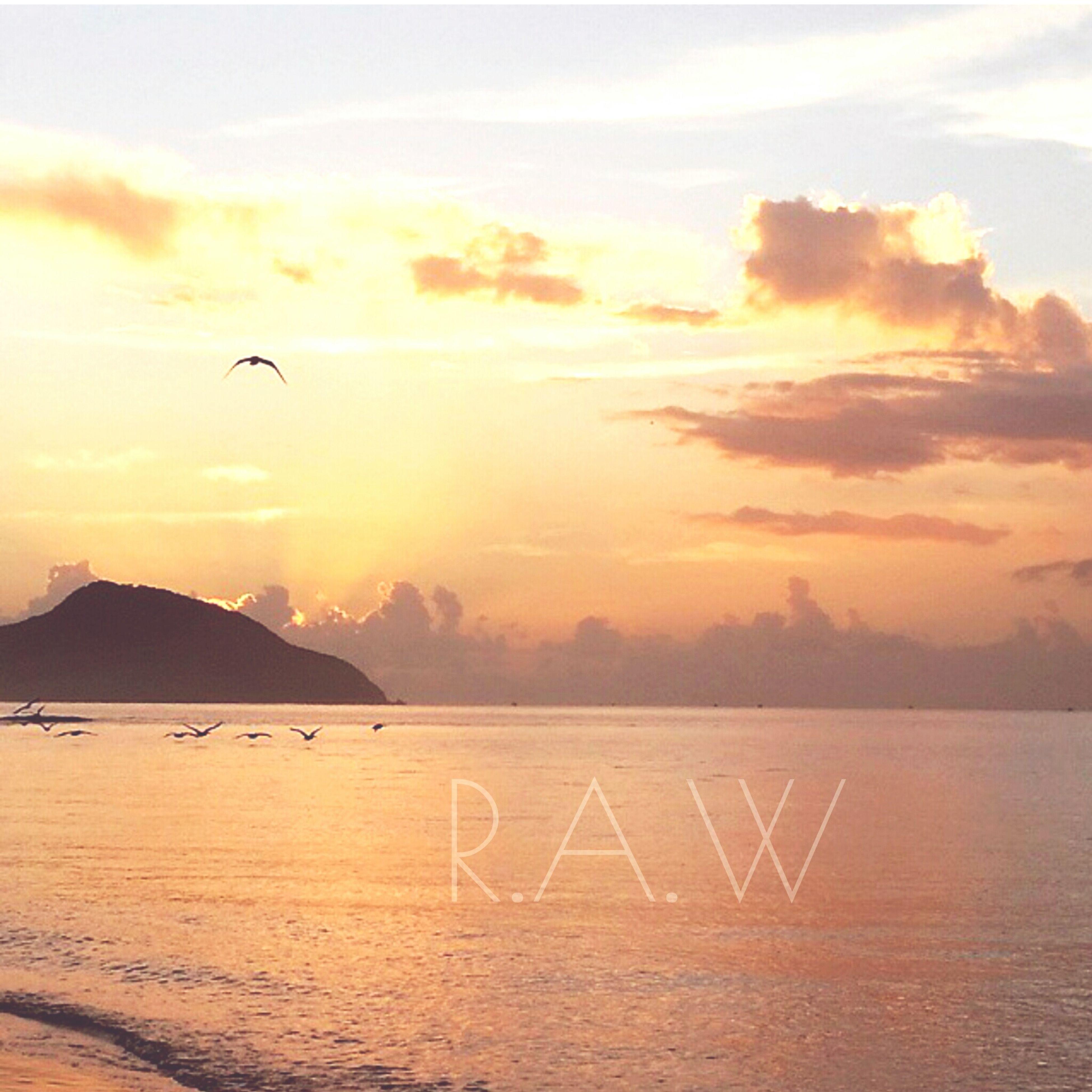 sunset, sky, scenics, mountain, tranquil scene, tranquility, beauty in nature, bird, water, flying, sea, nature, silhouette, cloud - sky, idyllic, orange color, mountain range, sun, cloud, animal themes