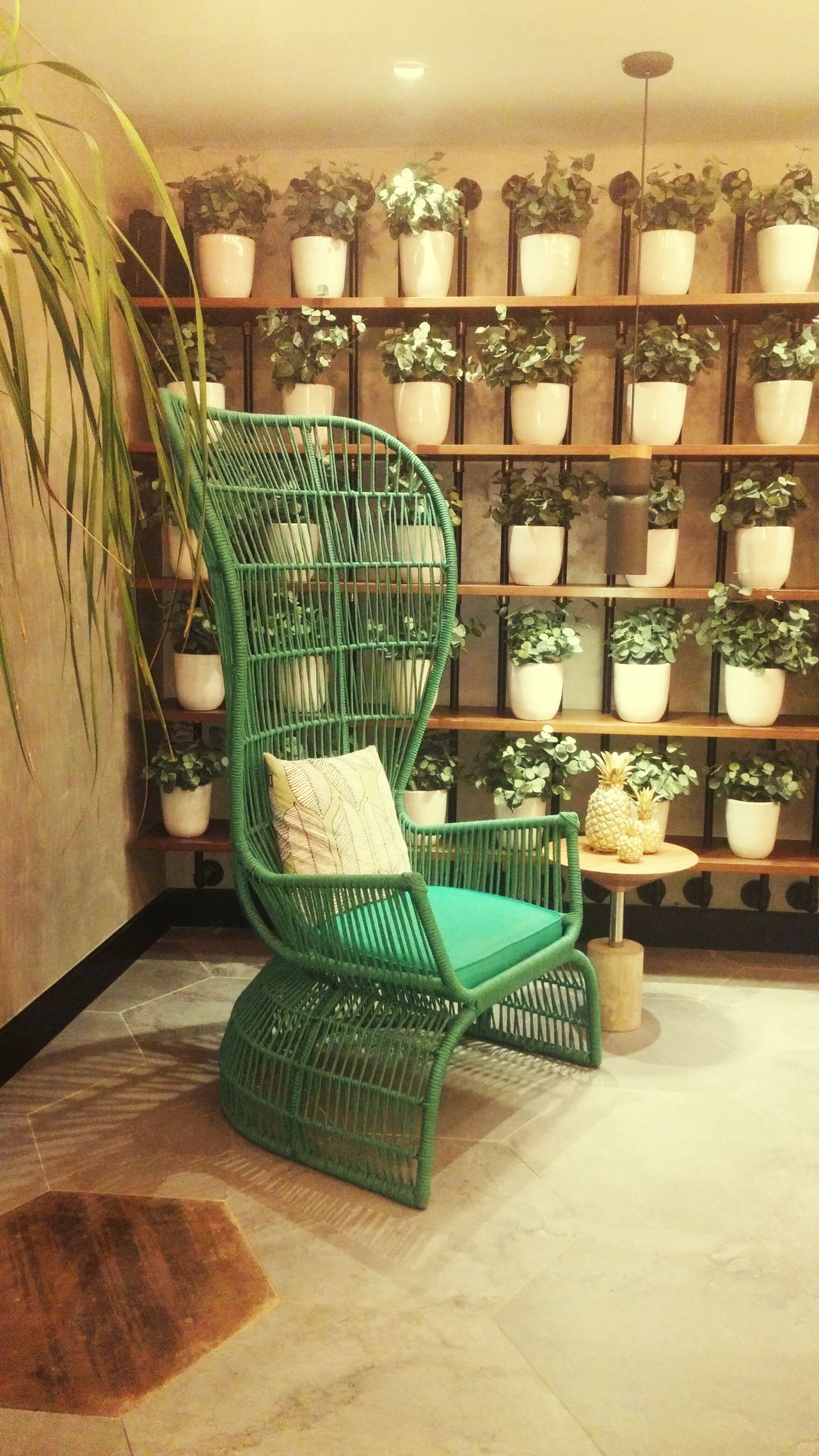 Time to relax... Indoors  Design Relaxing Moments Plants And Flowers Countryside Cousins  Hotel Life Rio De Janeiro, Brazil First Eyeem Photo