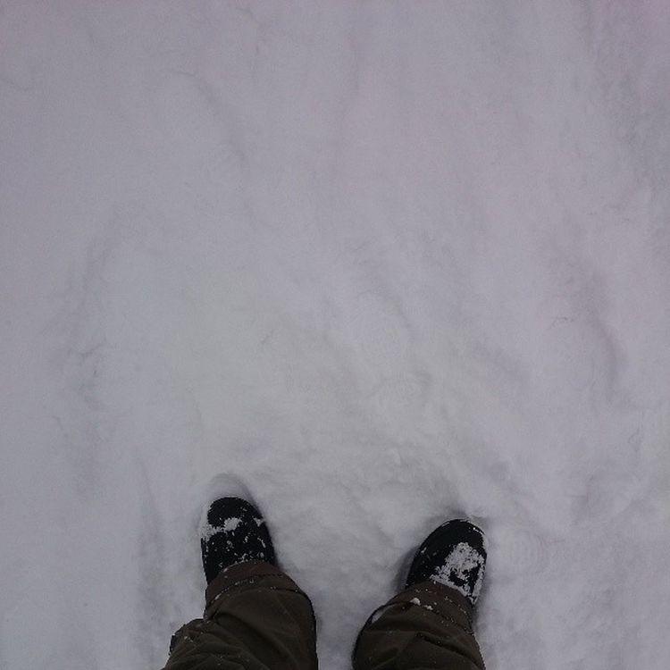 Sundayshooter スキージャム勝山