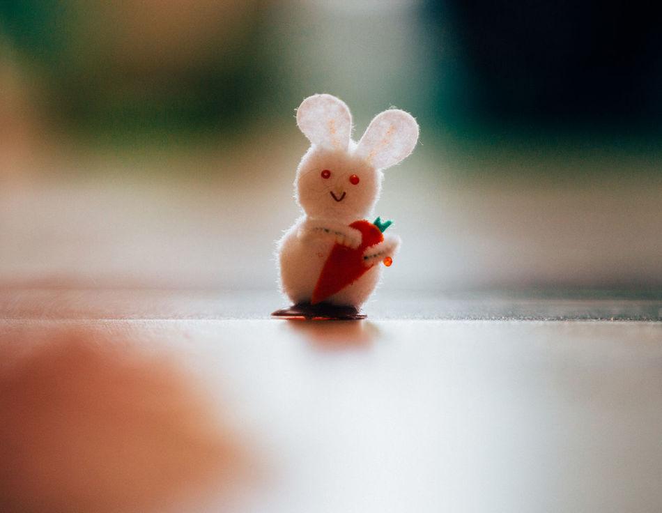 Beautiful stock photos of osterhasen, Animal Representation, Bunny, Close-Up, Day